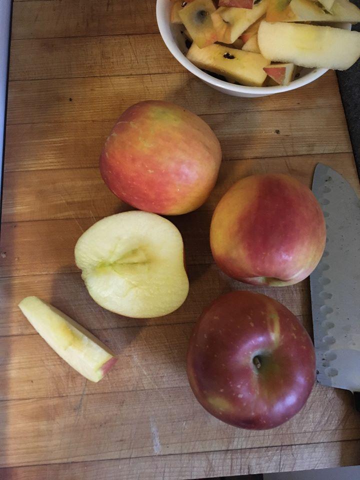 Small Batch Applesauce