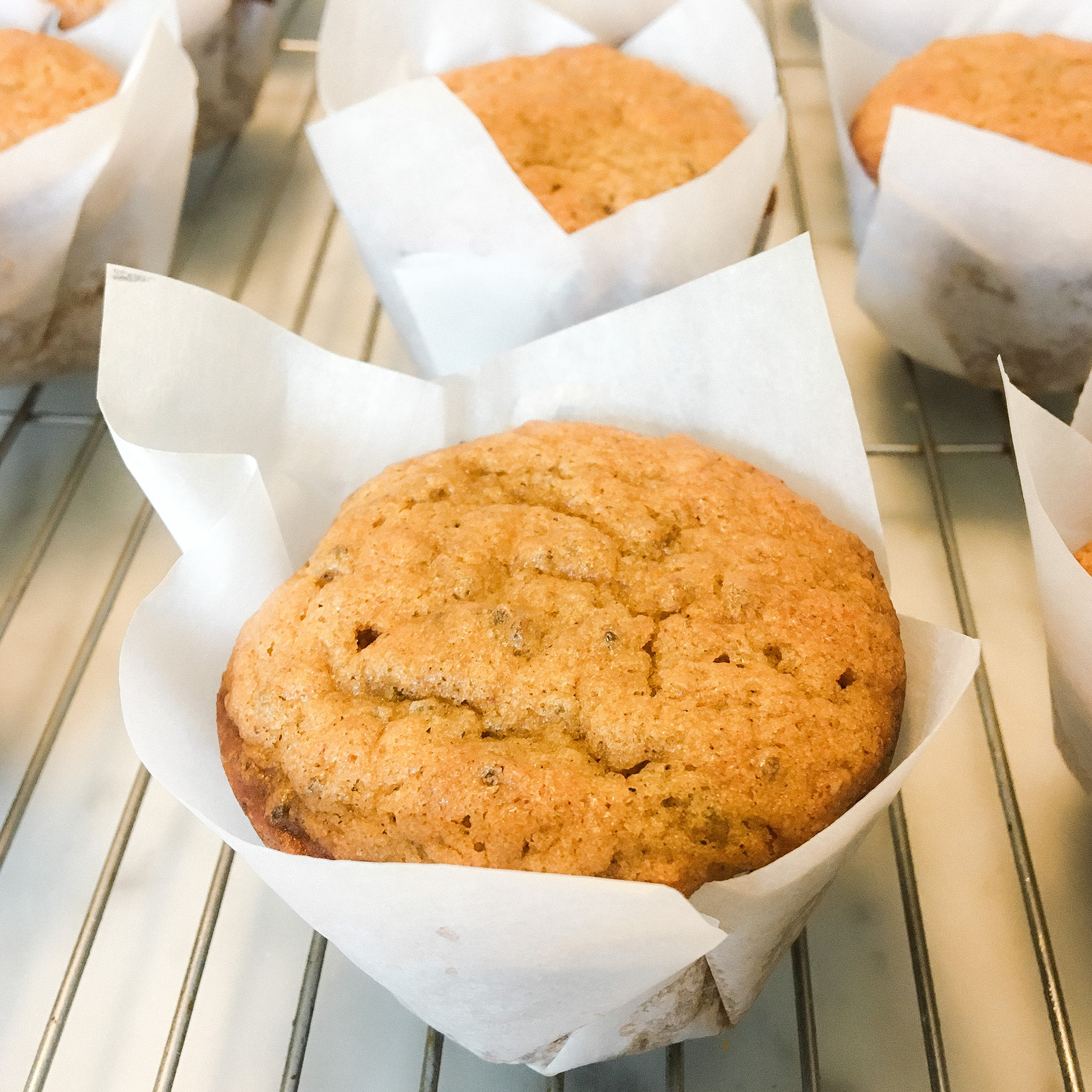 Making Parchment Paper Liners for my favorite Vegan Pumpkin Muffins (recipe too!)