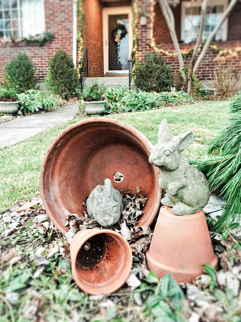 garden rabbits by the christmas porch