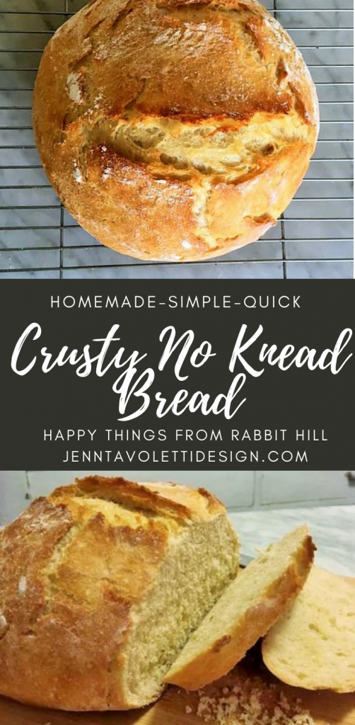 Crusty no knead bread