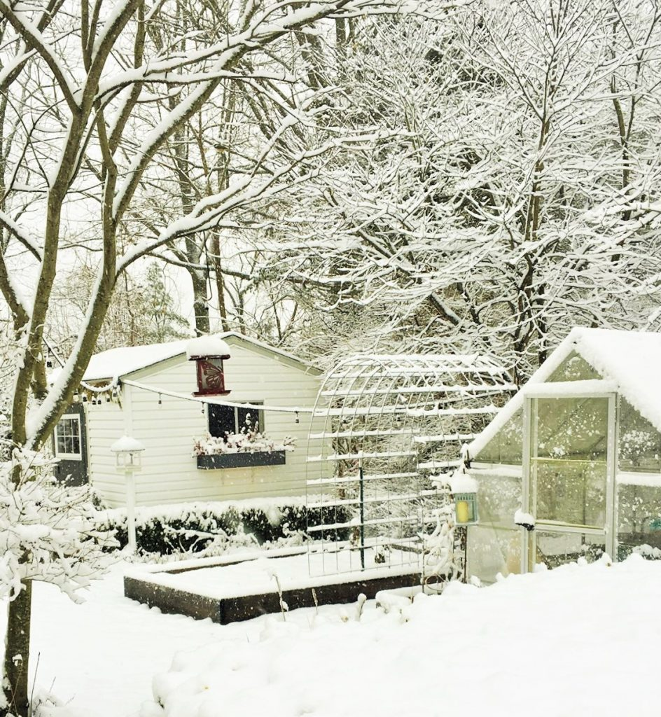 snowy day in the garden shed studio