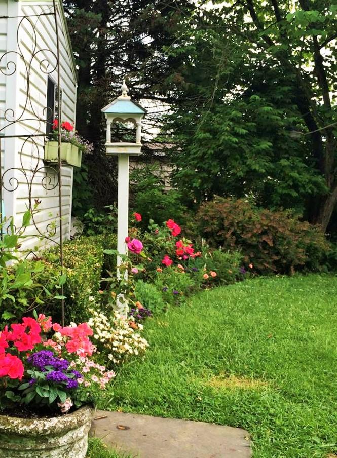 cottage gardens around the studio shed
