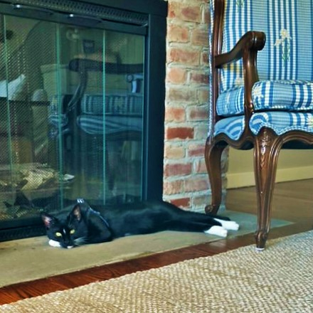 Home Tour Oliver by the fireplace