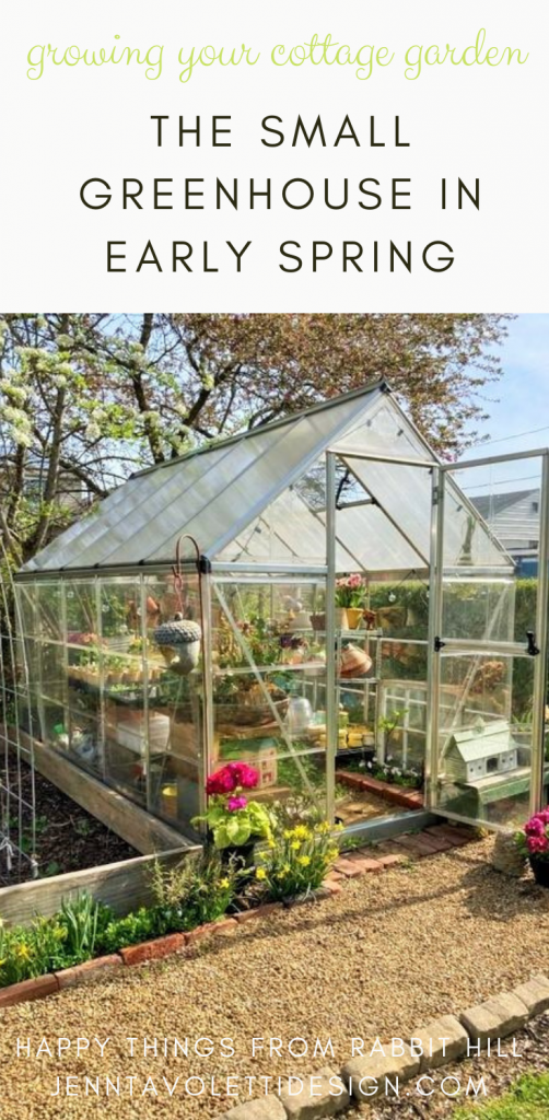 A look inside our small greenhouse this spring