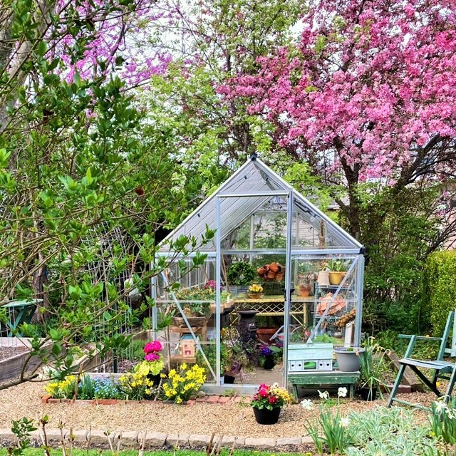 The Small Greenhouse in Early Spring – First Look Inside