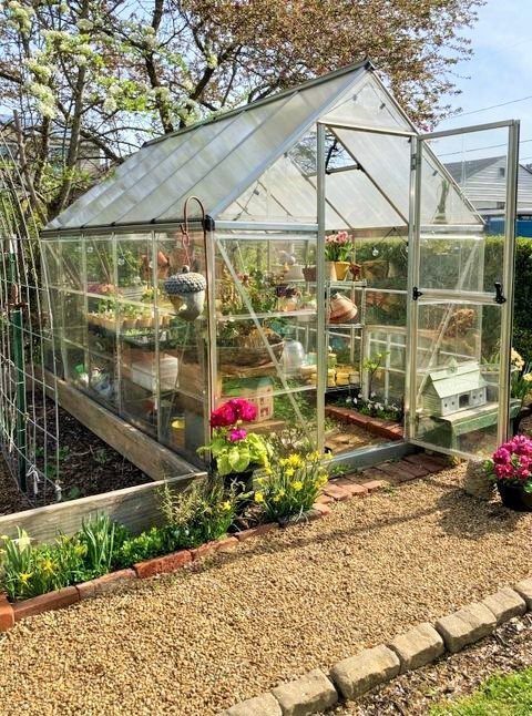 Our back garden greenhouse