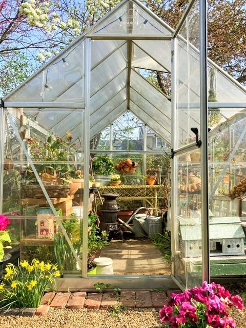Looking inside the greenhouse
